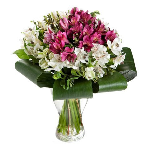 Image of Elegance: 20 alstroemeria white and pink